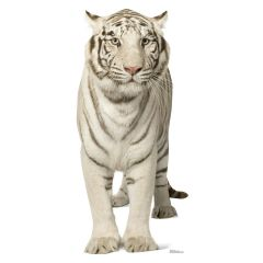 White Tiger Stand Up Photo Prop