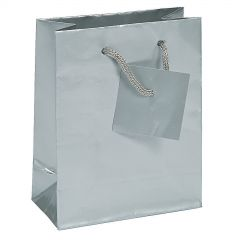 Small Silver Paper Gift Bags (Pack of 12)