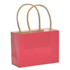 Small Red Paper Gift Bags (Pack of 12)