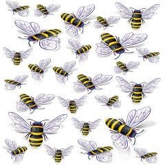 Bee Cutouts (Pack of 26)