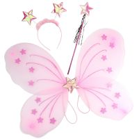Pink Butterfly Costume Set
