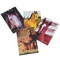 Carousel Horses Paper Gift Bags (Pack of 10)