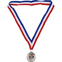 Metal Silver 2 Medal with Ribbon