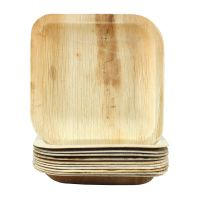 Natural Palm Leaf Small Square Plates (Pack of 6)